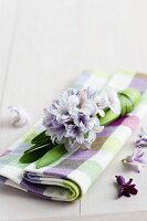 Hyacinth on checked linen napkin