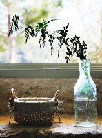 Leafy twig in glass bottle and linen-lined wicker basket on masonry window sill
