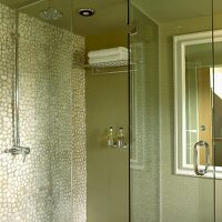 Green shower stall with mosaic tile wall and glass door