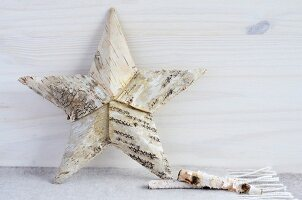 Bark star