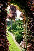 Archway in hedge leading into well-tended garden with artistic box topiary
