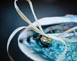 bride and grooms wedding rings presented in a sea shell