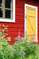 Red Scandinavian wooden house with yellow door