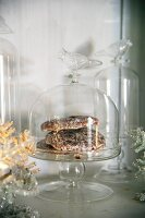 Gingerbread on glass cake stand with cover