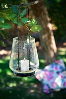 Lit candle in candle lantern hanging from branch