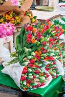 Bouquets of tulips on markets stall (Netherlands)