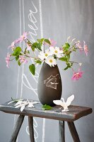 Cosmea in dark grey retro vase on old wooden stool in front of grey wall