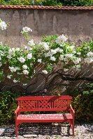 Rote Holzbank mit Lehne vor blühenden Büschen an Gartenmauer
