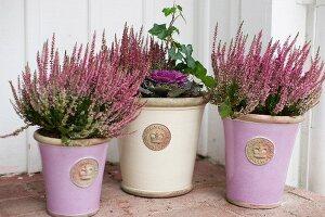 Heather in vintage ceramic pots