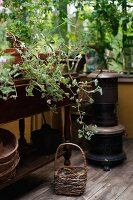 Basket and iron stove on wooden floor, potted plants on antique side table