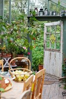 Basket of apples on table in greenhouse with collection of lanterns above open door leading to garden