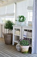 Potted herbs and lantern on wooden floor in front of white side tables on veranda