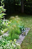 View of stainless steel watering can and stone-edged bed in garden