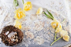 Yellow tulips and bird's nest on linen tablecloth