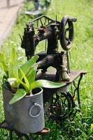 Garden decoration - plants in zinc container on bed plate of vintage sewing machine