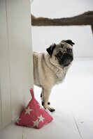 Dog peering round door with hand-sewn pyramid doorstop