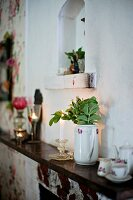 China jug of leaves and coffee set on mantelpiece below small niche in wall