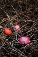 Three Easter eggs in various shades of red dyed using red wood on nest of twigs