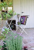 Old folding chairs, Oriental cushion and table on paved terrace adjoining white shed with bay tree and lavender in foreground