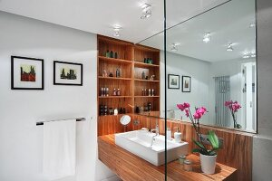 Washstand with trough-like sink on wooden washstand on mirrored wall and custom fitted shelves in niche