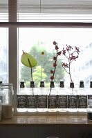 Row of repurposed whiskey bottles holding various flowering branches on windowsill