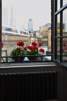 Open window with view of cityscape and potted red geraniums on windowsill