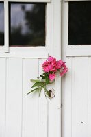 Pink phlox flowers on door handle of white, vintage entrance door