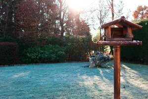 Bird table in wintery garden