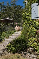 Stone steps edged by plants leading to terrace of Provençal guest house; open pale blue window shutter to one side