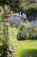 View through arched metal trellis of blue veronica in flowering border with garden ornaments