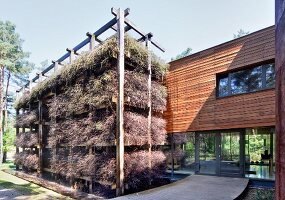 Bundles of brushwood on house-height wooden rack in front of modern house with glass walls and wood-clad upper storey