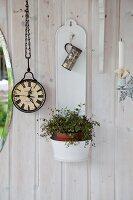 Weisser Blumentopfbehälter und Grünpflanze, an weiss lasierter Holzwand