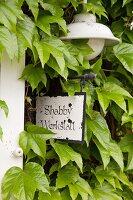 Hängeschild mit Beschriftung und Wandleuchte an berankter Hausfassade