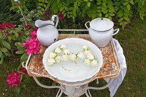 Weisse schwimmende Rosenköpfe in Waschschüssel auf rostigem Metallgestell im Garten