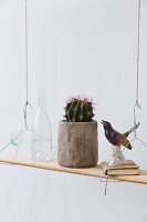Potted cactus and ornaments on shelf suspended from wire coat hangers