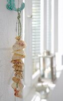 A chain of shells as maritime wall decoration