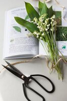 Lily of the valley and garden shears lying on open book