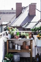 Plants and gardening utensils on potting bench on roof terrace