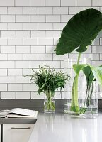 Leaves and flowers in glass vases of various sizes on worksurface below white tiled wall