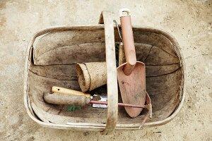 Garden tools in chip wood trug