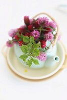Small. white teapot holding posy of red clover flowers and raspberry leaves