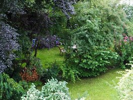 Seating area behind bushes in idyllic garden