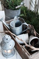 Flowerpots in old wooden crate, zinc watering can and pin cones next to lit candle lantern