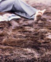 Kuschelplatz auf braunem Fellteppich