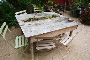 In rustikalem Holztisch eingelassenes Minibeet mit Sukkulenten, im Freien