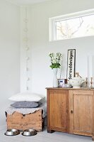 Two animal feeding bowls in front of old cabinet and wooden trunk