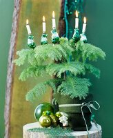 Conifer in pot with green felt cover decorated with baubles & Christmas tree candles