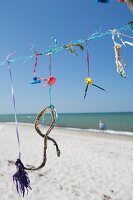 Flotsam hung from line on Prerow bean (Baltic Sea, Germany)