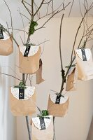Advent calendar made from paper bags and paper doilies hung from branch