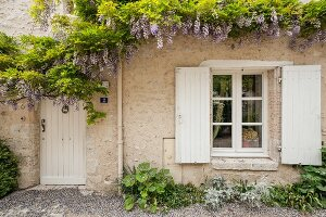 Flowering wisteria on pale stone façade above wooden door and window with white shutters
